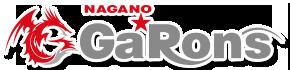 長野☆GaRons(ガロンズ)須坂市発のバレーボールチーム|長野県北信地区に Vリーグチームを創ろう!!