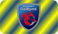 emblem01